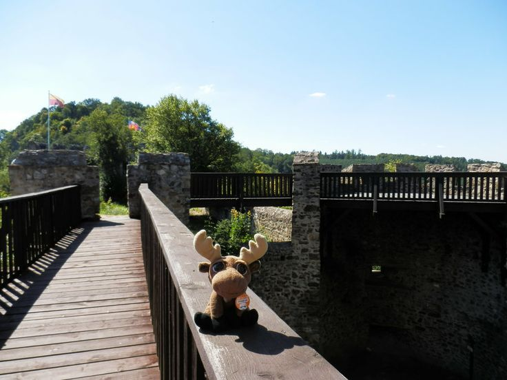 Mr. Moose captured the bridge to the fortification.