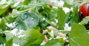 Roquette (Eruca sativa), la salade aphrodisiaque