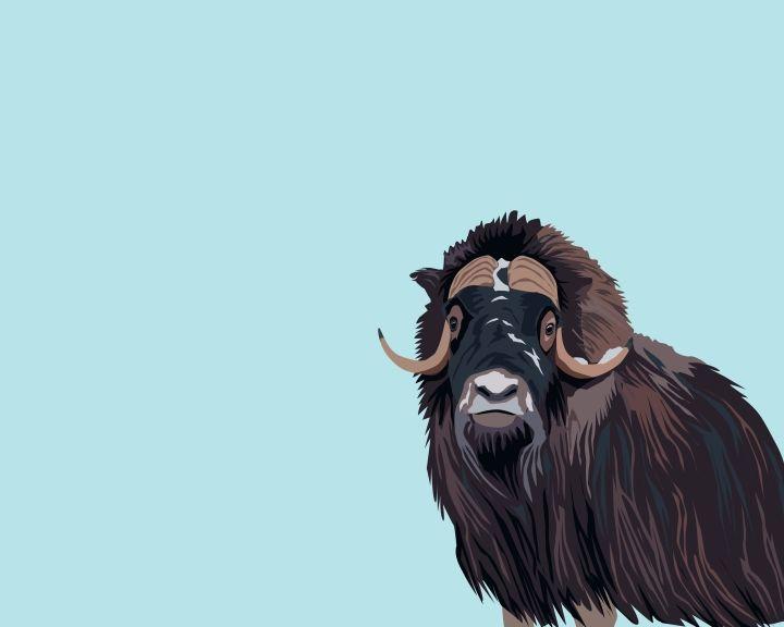 årskort til zoologisk have
