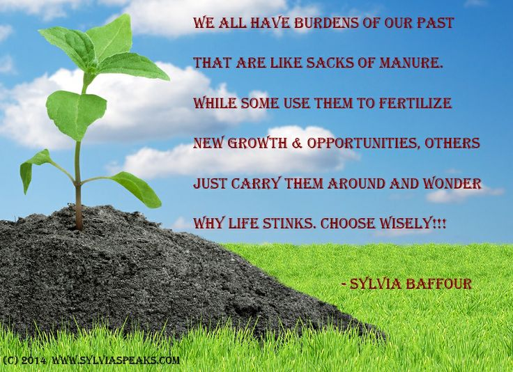 New Growth. quotes on overcoming. quotes on self leadership. quotes on self empowerment. quotes on courage. quotes on leadership. quotes on motivation. motivational quotes. quotes on optimism.quotes on ambition. quotes on excellence. quotes on good choices. quotes on hard work. quotes on wisdom. www.sylviaspeaks.com