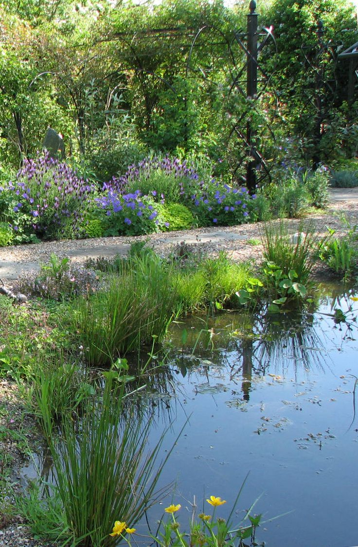 25 best ideas about pond construction on pinterest for Pond shade ideas