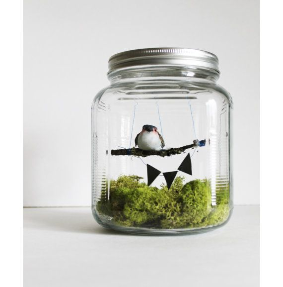 bird in a jar diorama spring home decor by ReverseChronology