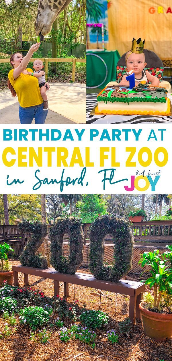 The Centralfloridazoo Will Throw Your Child The Ultimate Birthday Party With Pizza Fun Decor G Zoo Birthday Party Birthday Decorations Kids Birthday Parties