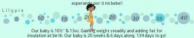 embarazo de 15 semanas