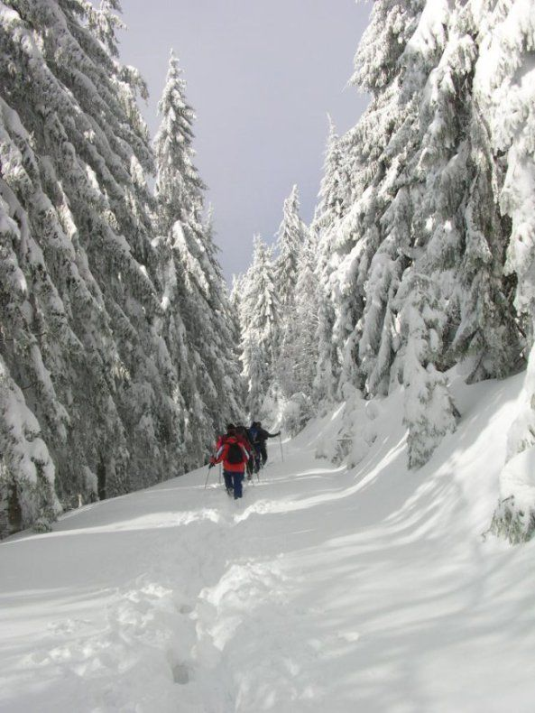 drumetie_iarna_1_1