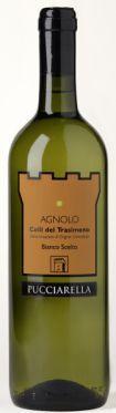Agnolo di Pucciarella: gustalo con il persico al forno! enjoy this wine with roasted perch!