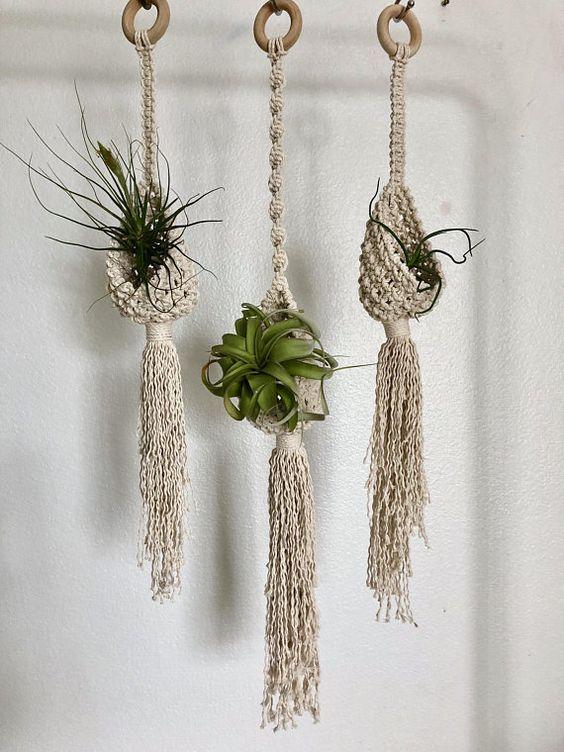 Plant Hanger Pods Air Plants Pinterest Macrame