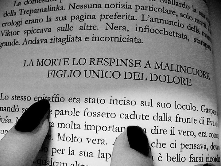 #vodkaeinferno #PenelopeDelleColonne #citazioni #frasi #libri