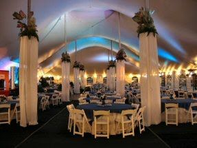 Set props for Greek Wedding - white sheer curtain on embroidery hoop hung up looks like Columns