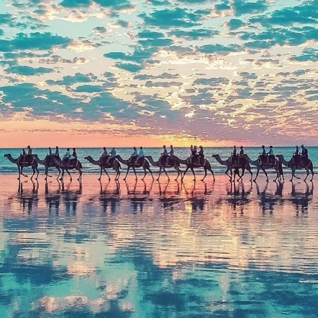 Spectacular sunset Cable Beach, Australia. #WanderlustWednesday - See more at: http://iconosquare.com/viewer.php#/detail/1040134626600594542_4761834