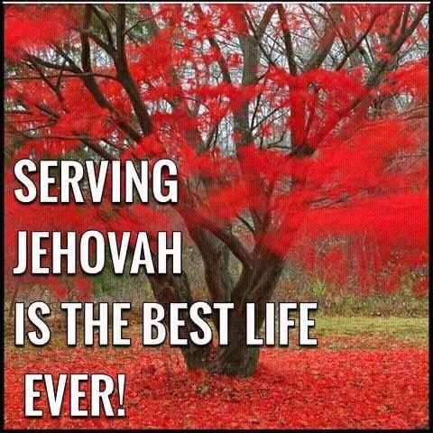 jehovah the grand creator Discuss anything jehovah witness, jworg or watchtower society related.