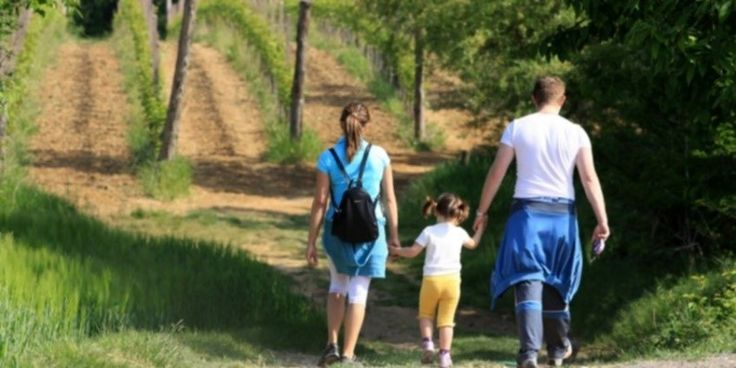 Steps to a Successful Winery Visit: Take the kids, but, if you do, find something for them to do.  Wine regions are very pretty around now.  #wines #vino #winery #winetours #winelover