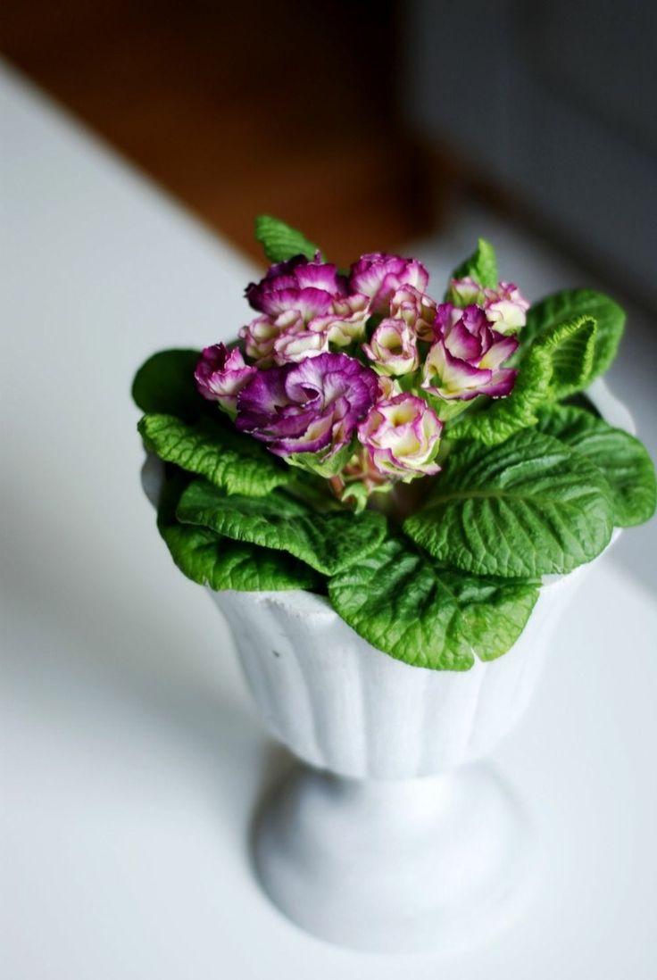 articles funéraires - bouquet de fleurs dans un vase en pierre blanc neige