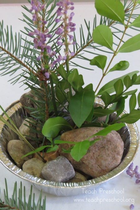 """Discover and Explore: Arranging a Forest by Teach Preschool ("""",)"""