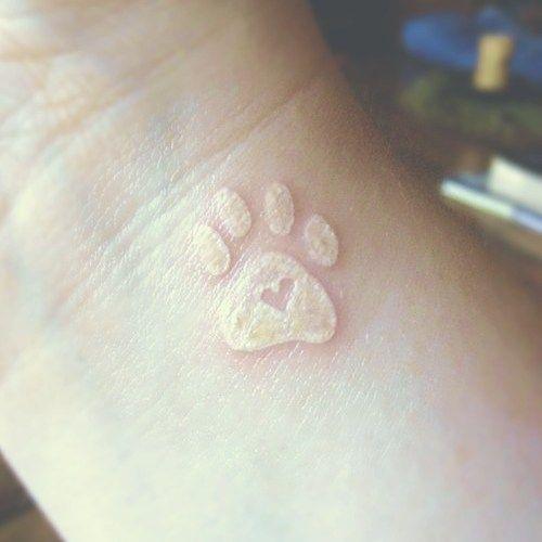 tatuaje huella de gato