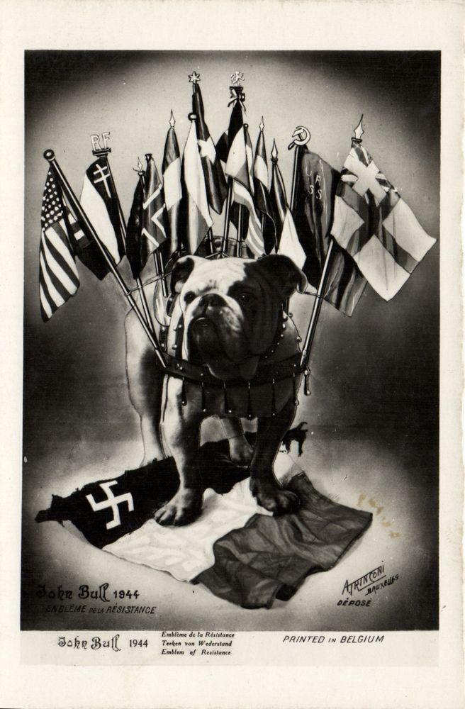 Bulldog John Bull WWII propaganda German flag photo postcard 1944