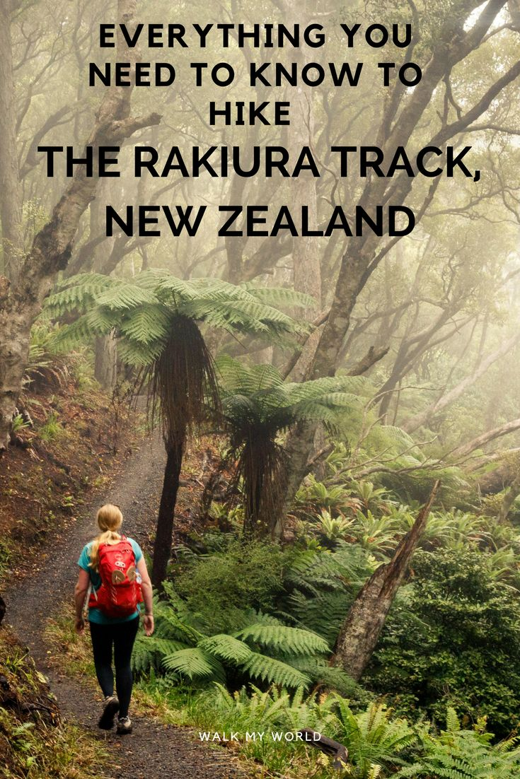 Everything you need to know to hike the Rakiura Track, Stewart Island, New Zealand.