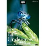 Life in the Undergrowth (DVD)By David Attenborough
