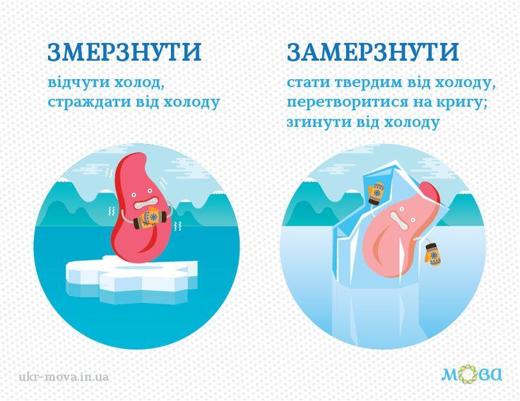 Мовознавець Олександр Пономарів: Обидва ці слова походять від одного кореня, проте їх не можна вживати одне замість одного. Замерзнути означає «стати твердим від холоду, перетворитися на кригу; згинути від холоду»