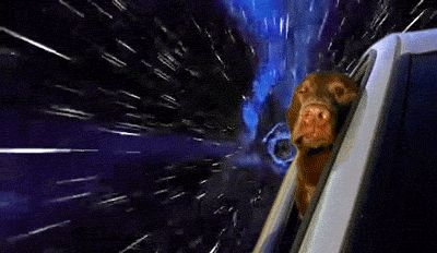 funny-gif-dog-face-Space-warping