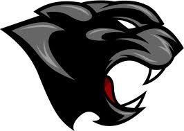 panther logos - Google Search
