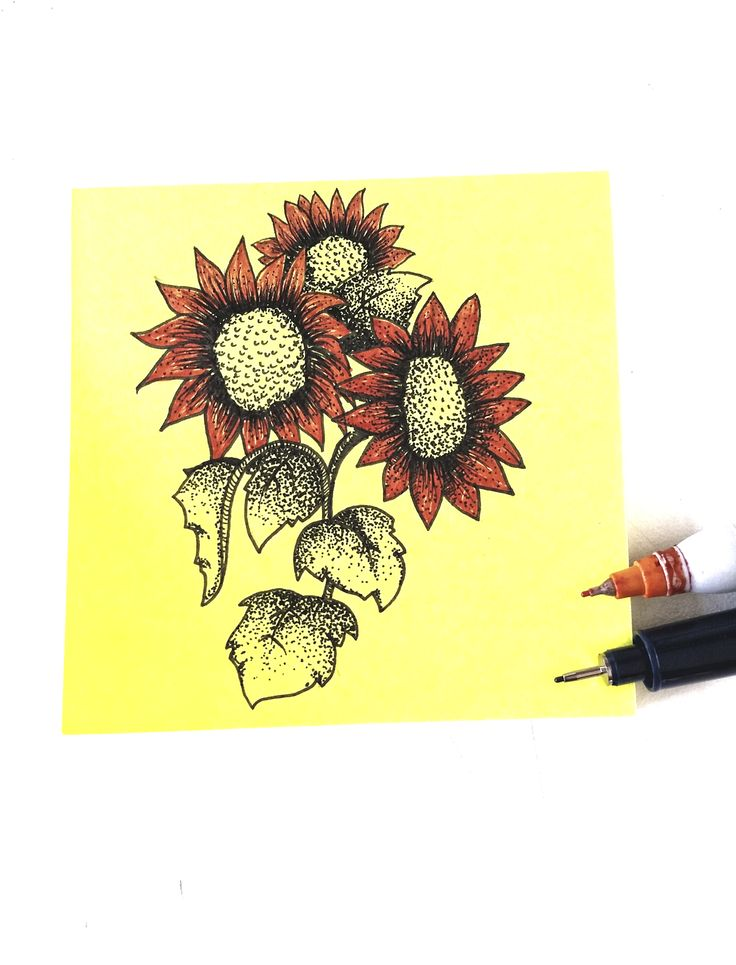 Calendula officinalis #FlorMaravilla #illustration #Handmade