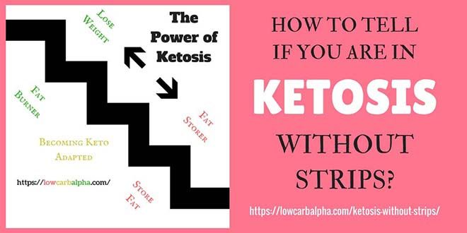 Ketone sticks or blood ketone meters can test if you are in ketosis but how to know without strips? Read signs and symptoms of ketosis on a ketogenic diet!
