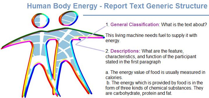 example of report text with generic structure human body energy