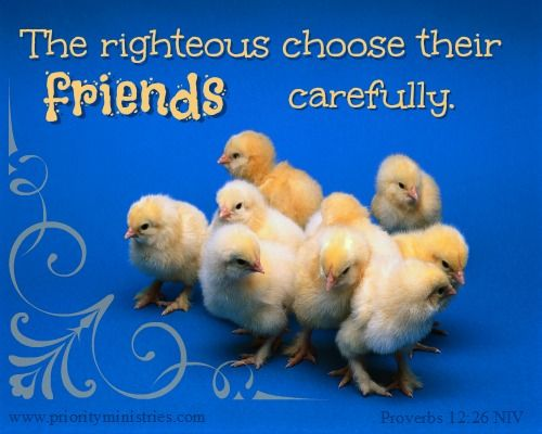 The importance of friendship! Proverbs 12:26