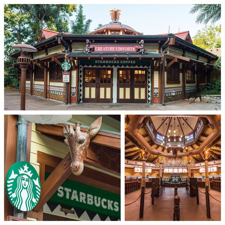 You can now enjoy Starbucks beverages at Creature Comforts at Disney's Animal Kingdom! This location reflects the theming of the park with African design elements and will support conservation efforts – a portion of the sale of each Starbucks Flat White Latte will benefit animal conservation programs.