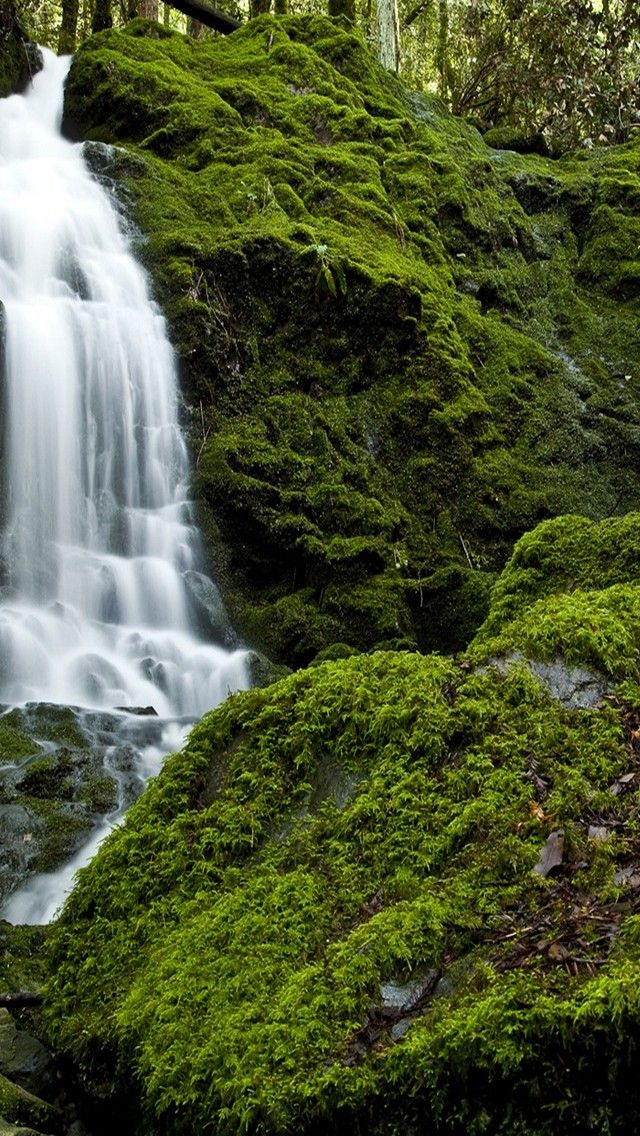 iphone wallpapers background waterfall n green moss