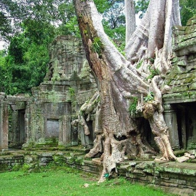 Beautiful Ruins, Ancient Ruins, Old