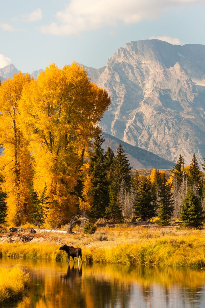 25 best ideas about autumn scenes on pinterest fall - Pics of fall scenes ...