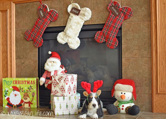 My GBGV Life | Our Favorite Christmas Stockings For Dogs Ever! These stockings are not only perfect for your dog, they make great gifts! Get 15% off your order with the promo code on the blog!