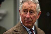 Принц Чарльз собирается установить на крыше Букингемского дворца солнечные панели  http://nordenline.ru/britain/1652/