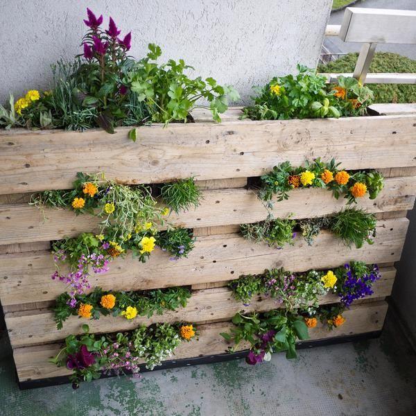 1000 ideas about jardines en espacios peque os on - Jardines pequenos ideas ...
