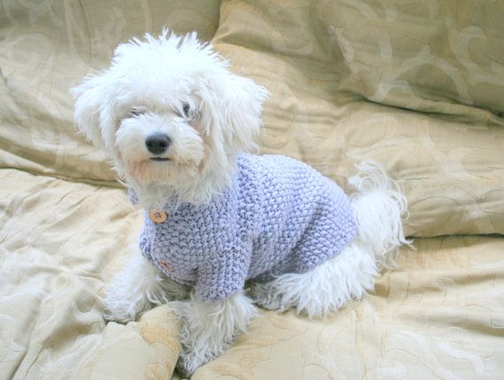Dog Sweater  Lavander Sweater  Pet Clothing  Hand Knit by BubaDog, $48.00
