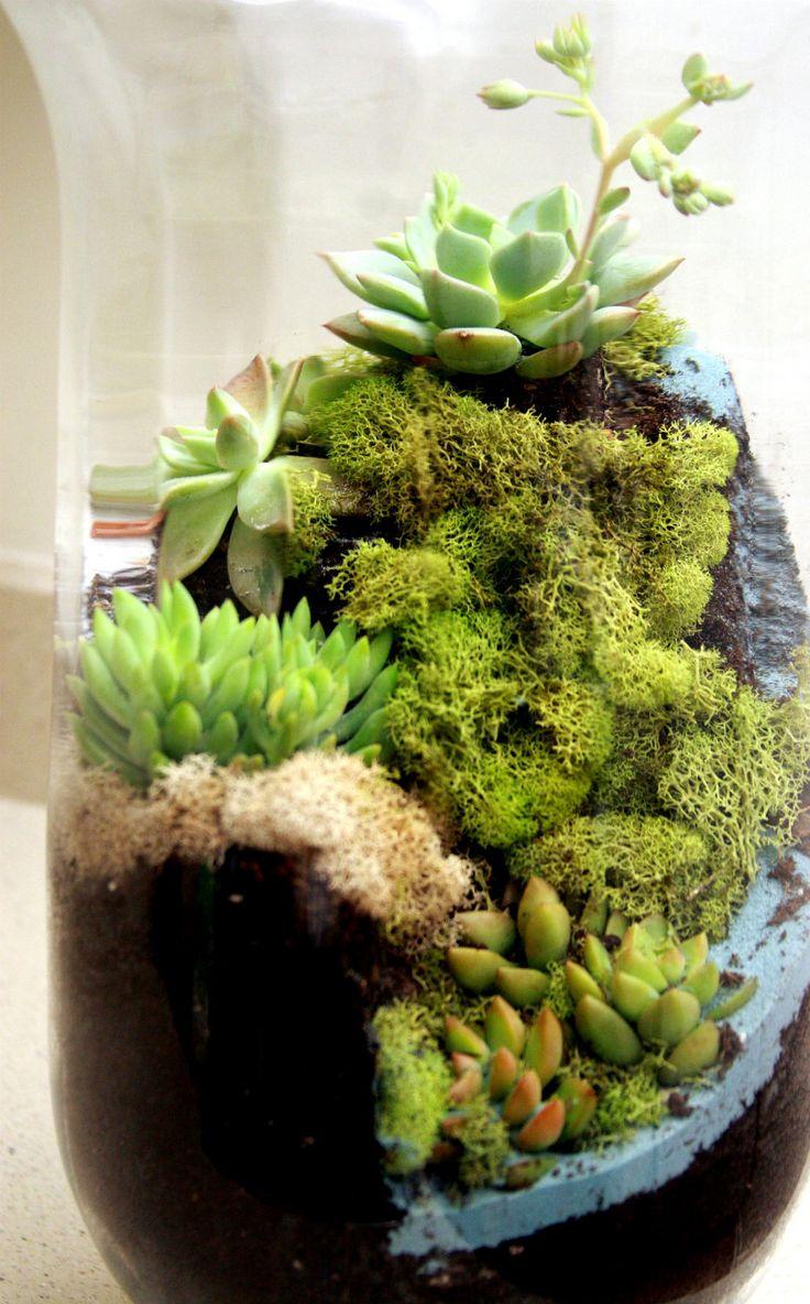 another world succulent waterfall terrarium via etsy terrariums pinterest. Black Bedroom Furniture Sets. Home Design Ideas
