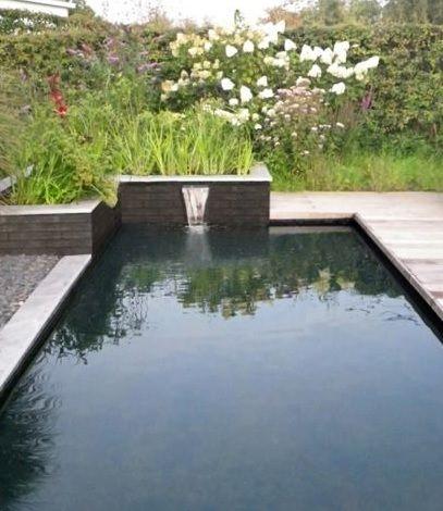 zwemvijver met natuurlijke filter