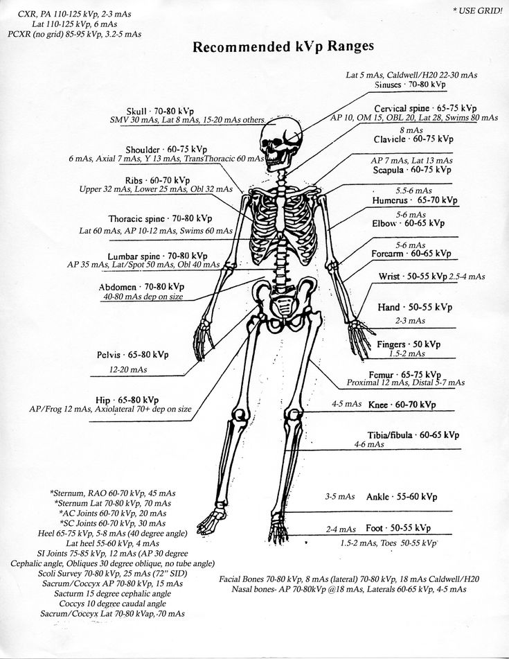 2089 best radiography education images on pinterest human anatomy kvpmas ranges fandeluxe Images