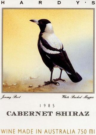 Birds - Bourbon Street Photography
