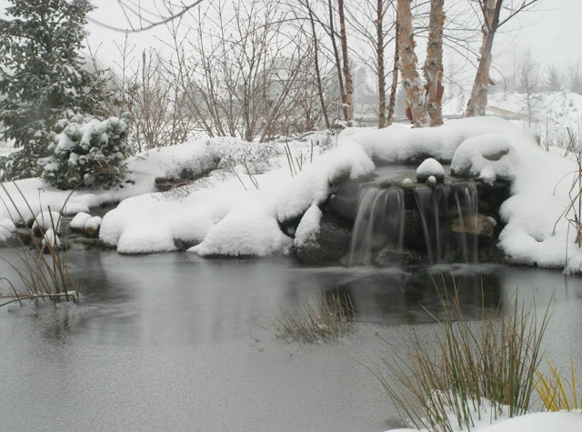 28 best disappearing pondless waterfall ideas for your for Koi pond maintenance tips