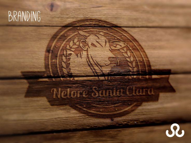A Tudo Marketing foi responsável pelo branding do complexo de fazendas Nelore Santa Clara. #Nelore #NeloreSantaClara #Fazenda #Gado #TudoMkt #TudoMarketing #Marketing #Design #Branding #Marca #Logitipo #Logomarca