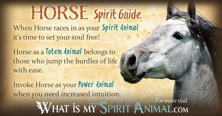 The most in-depth Horse Symbolism & Horse Meanings! Horse as a Spirit, Totem, & Power Animal. Horse in Celtic & Native American Symbols. Horse Dreams, too!