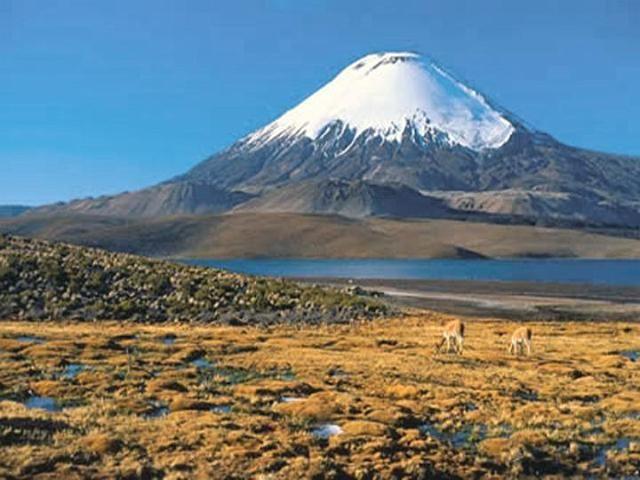 Volcán parinacota , Norte de Chile.