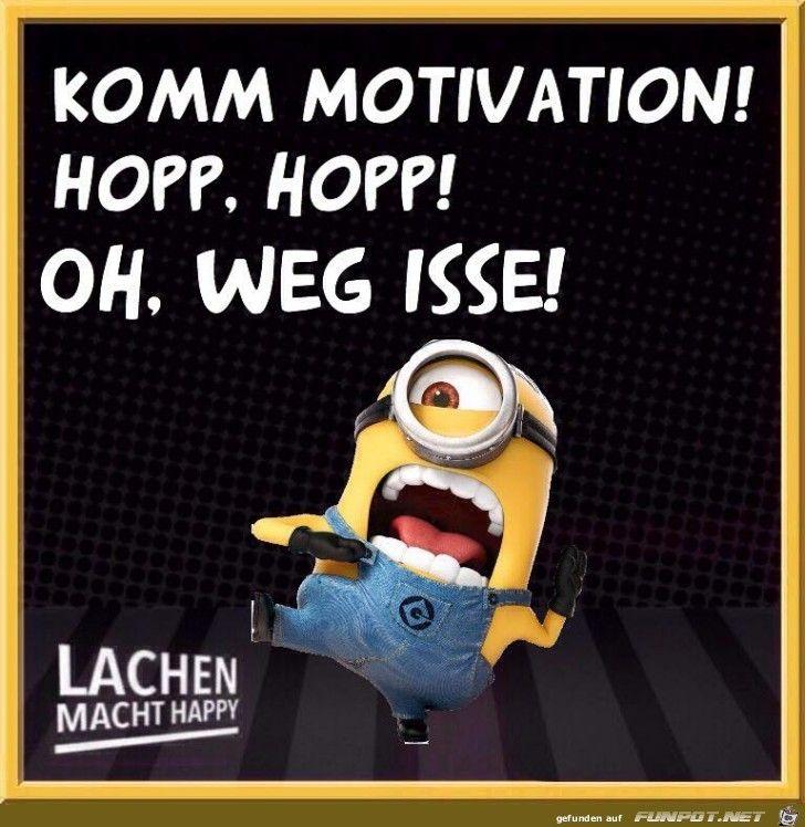 lustiges Bild 'Komm Motivation.jpg' von Floh. Eine von 11217 Dateien in der Kategorie 'klasse Sprüche und Witze' auf FUNPOT.