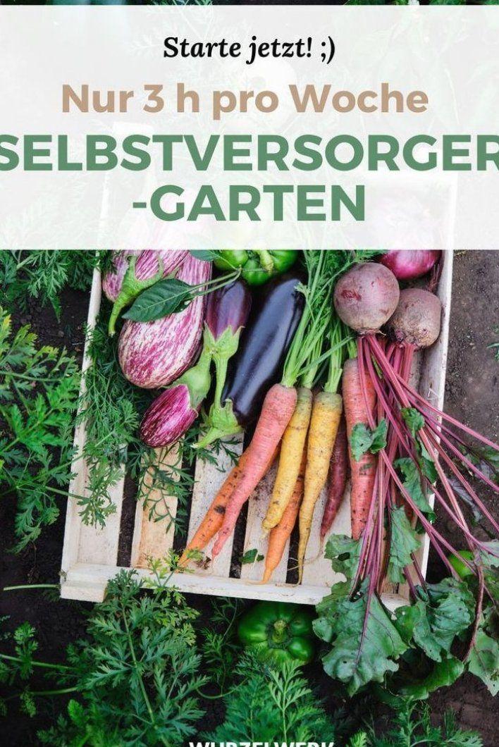 Du Tr Umst Von Einem Pflegeleichten Selbstversorger Garten Der Auch Noch Richtig Dicke Ernten Abwirft Das Mu Growing Vegetables In Pots Garden Small Gardens