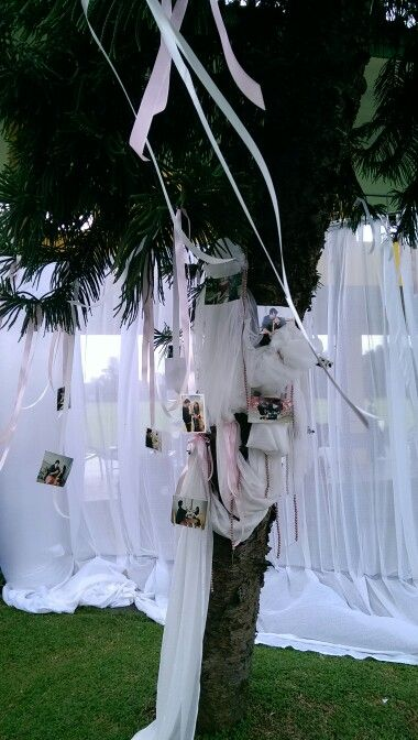 Creative decorative tree, simply beauty for an outdoor wedding concept. Decor by @infinita_8