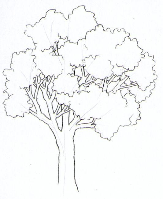 1000 bilder zu baum zeichnung auf pinterest b ume - Baum malen ...
