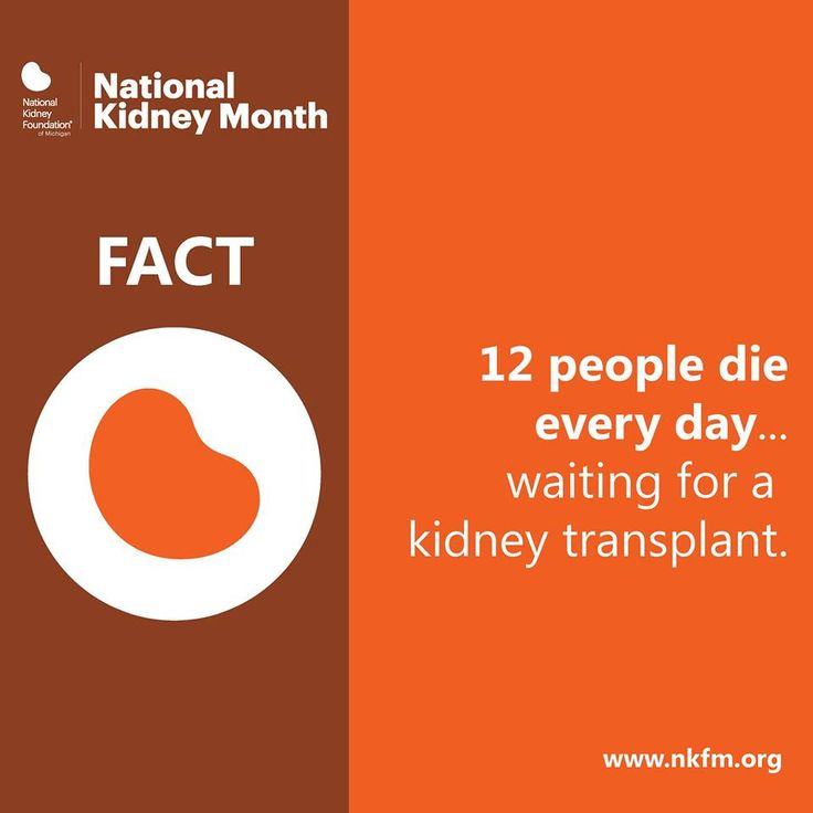 Every day, 12 people die waiting for a kidney transplant. Consider adding your name to the Michigan Organ Donor Registry and give the gift of lifel ‪#‎KidneyMonth‬